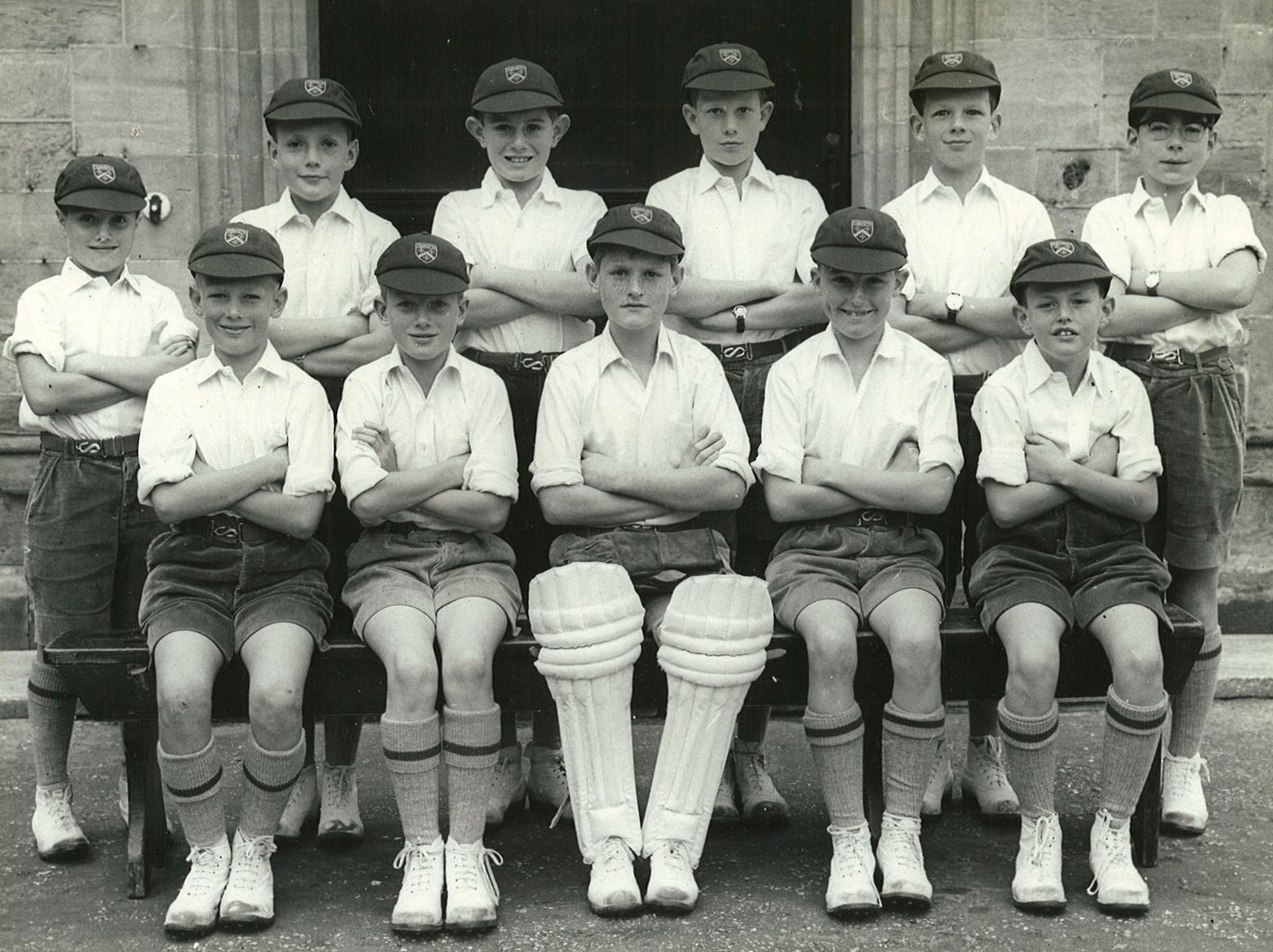Cricket XII (10)